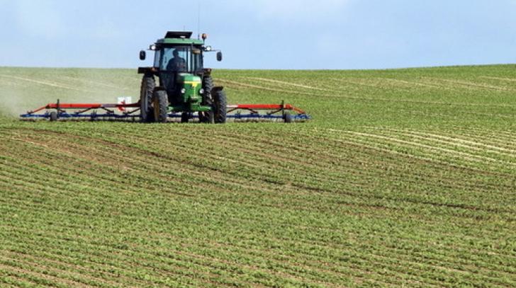Reguli noi şi ABSURDE pentru vânzarea de terenuri agricole