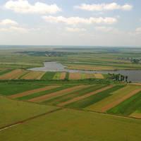 E OFICIAL: Deputații au votat Legea vânzării terenurilor agricole din România